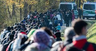 Граждане Украины составляют треть нелегальных мигрантов в Европе