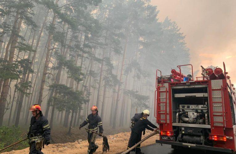 В Луганской области вторые сутки горит лес