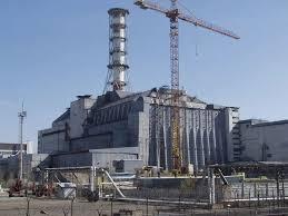 Стройкомпании проворачивали миллионные махинации в Чернобыльской зоне