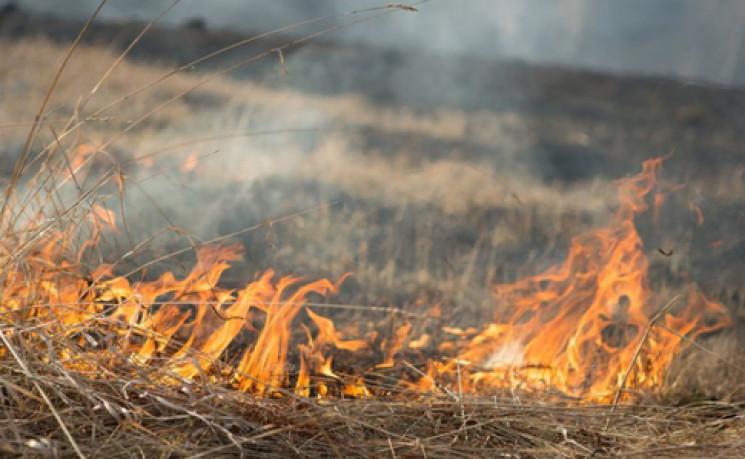 Рятувальники оголосили надзвичайний рівень пожежної небезпеки в Україні
