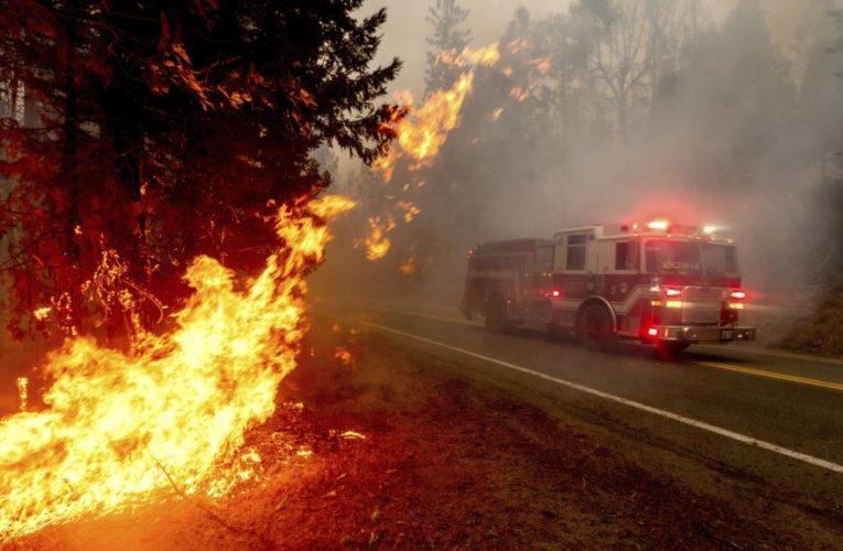 У Каліфорнії розгорілись найбільші в історії штату пожежі