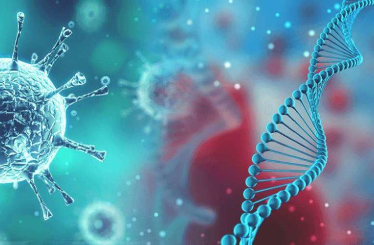 Разгадана главная загадка коронавируса