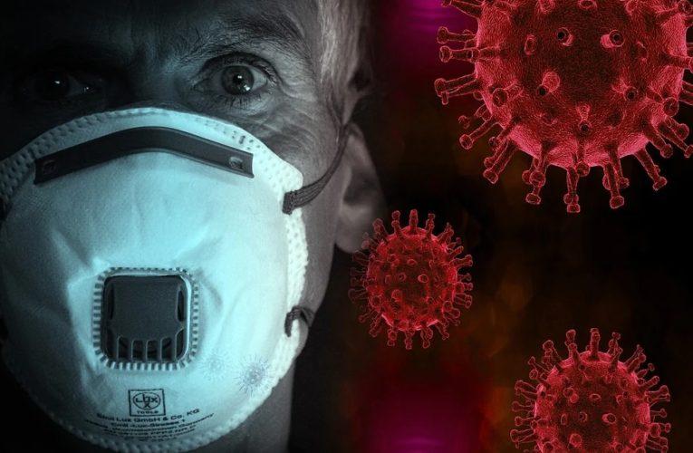 ВОЗ решила лечить коронавирус травами