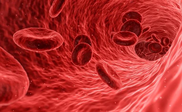 Ученые назвали признак, указывающий на короткую жизнь человека