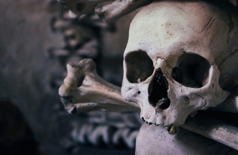 Ученые обнаружили в Испании человеческое жертвоприношение эпохи неолита