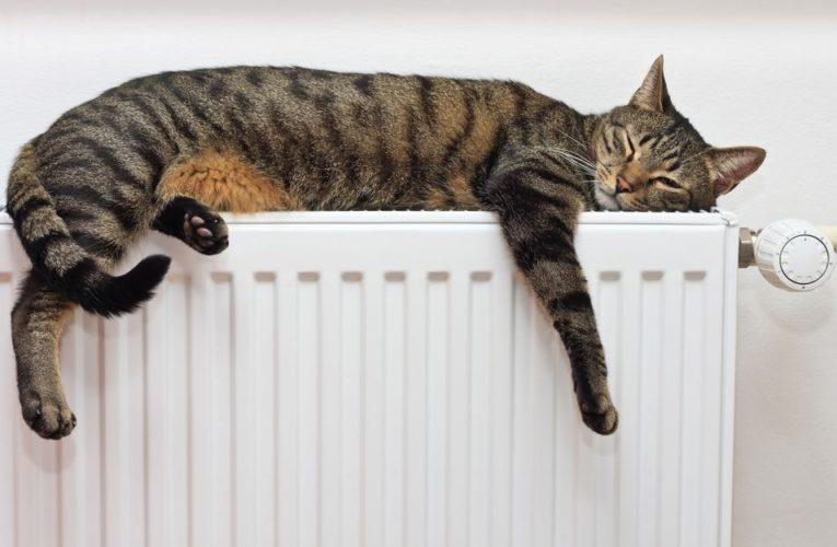 Киевские дома начали подключать к теплу
