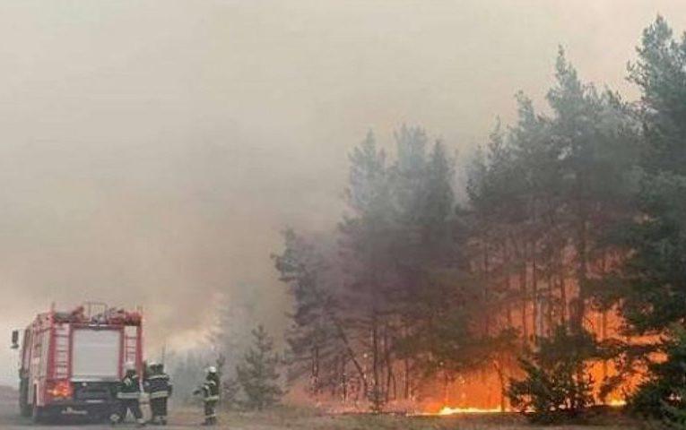 Ситуація в Станиці Луганській дуже складна через велику кількість вибухонебезпечних предметів, які детонують від високої температури — РГА