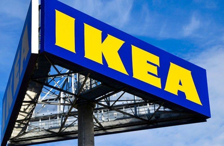 IKEA не знайшла доказів використання незаконно заготовленої деревини із України