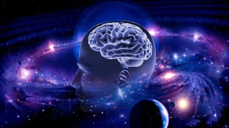 Человеческий мозг является «копией» Вселенной — учёные
