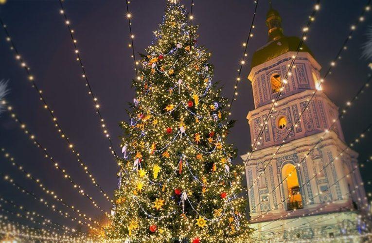 В Киеве завершили сборку новогодней елки