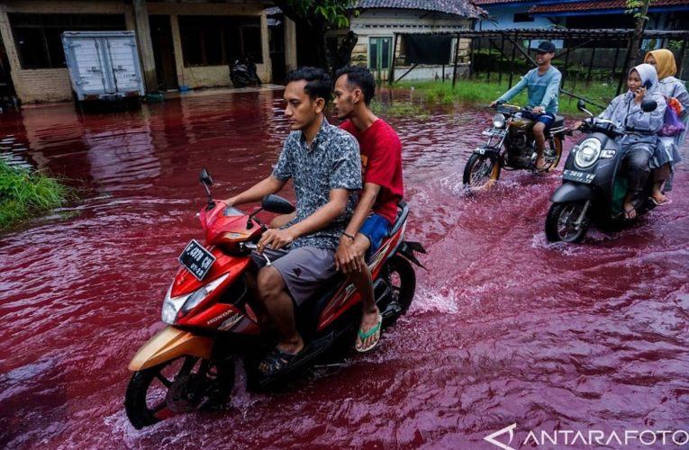 В Индонезии улицы превратились в «кровавые» реки