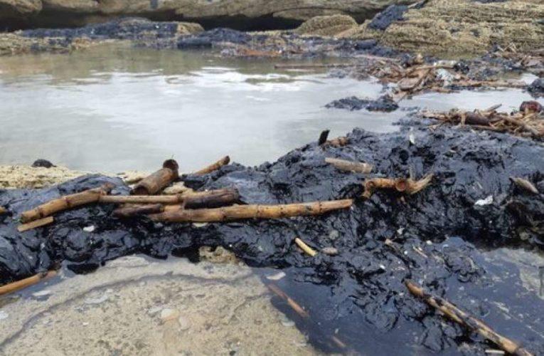 В Израиле произошла масштабная экологическая катастрофа