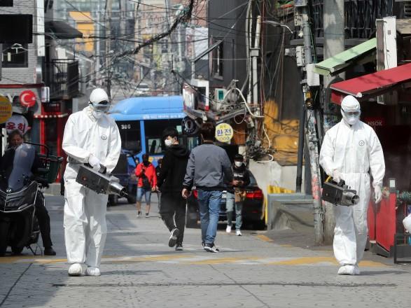 В Южной Корее будут тестировать на COVID-19 домашних животных