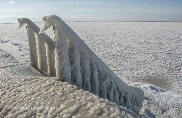 Набережная Бердянска покрылась льдом (Фото)
