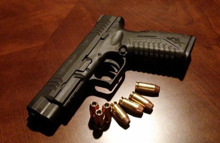 «Слуги народа» провели во фракции голосование о рассмотрении закопроекта об оружии