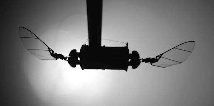 В США создали высокоманевренный микро-дрон размером со шмеля