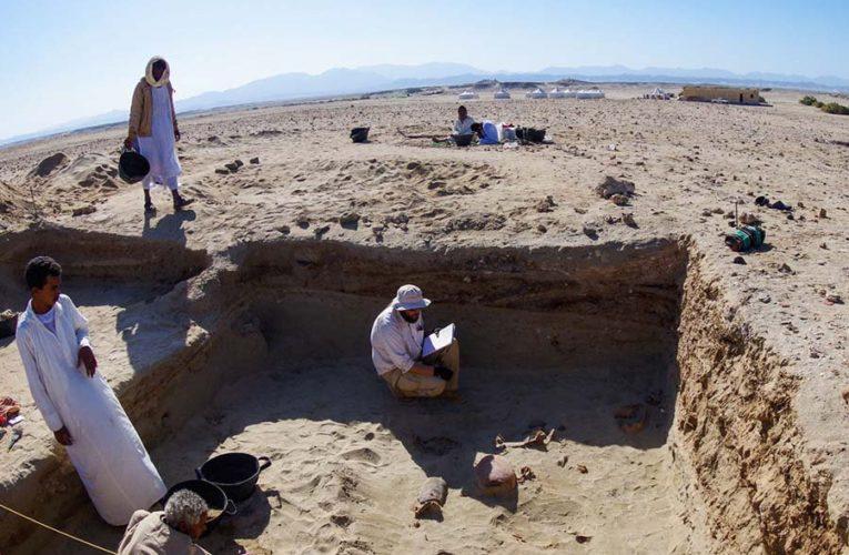 В Египте обнаружено самое старое в мире кладбище домашних животных