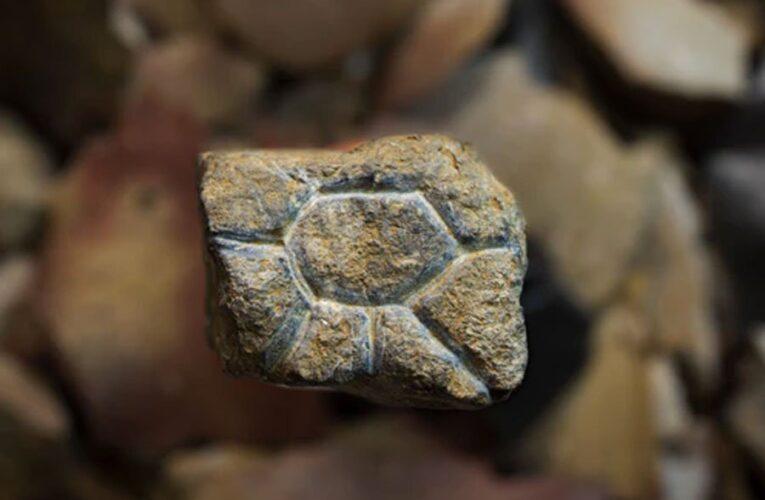 В Китае найден редкий каменный артефакт возрастом 20 тысяч лет