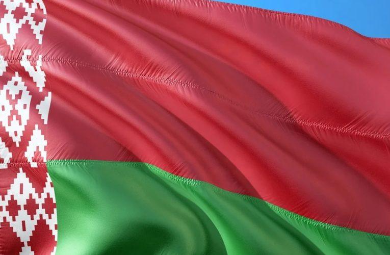 Оппозиция Белоруссии показала свой проект новой Конституции