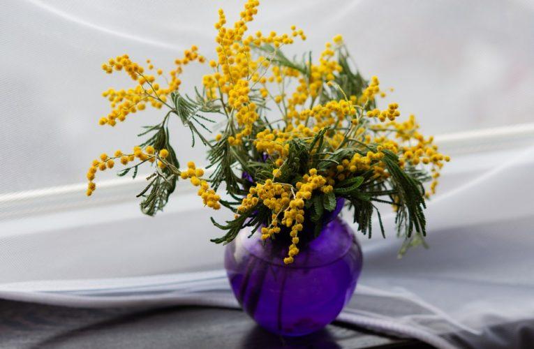 Раскрыт секрет долгого хранения цветов после 8 Марта