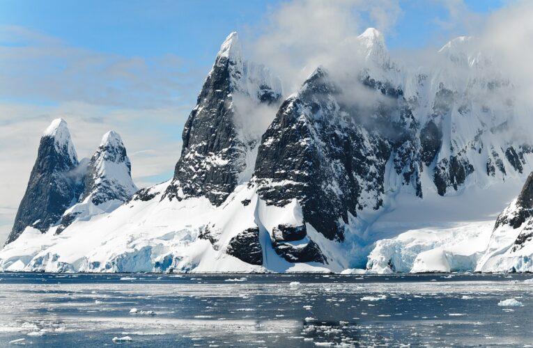 Под километровым льдом Гренландии нашли живые растения