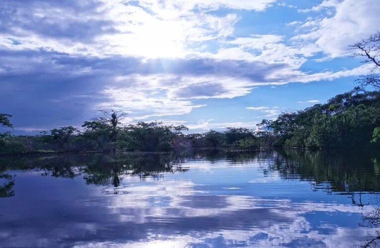 В Амазонии ученые обнаружили древние поселения в виде циферблата часов