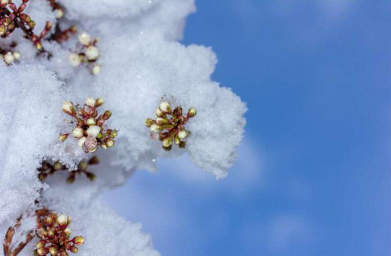 В Украину  вновь идет похолодание с дождями и снегом