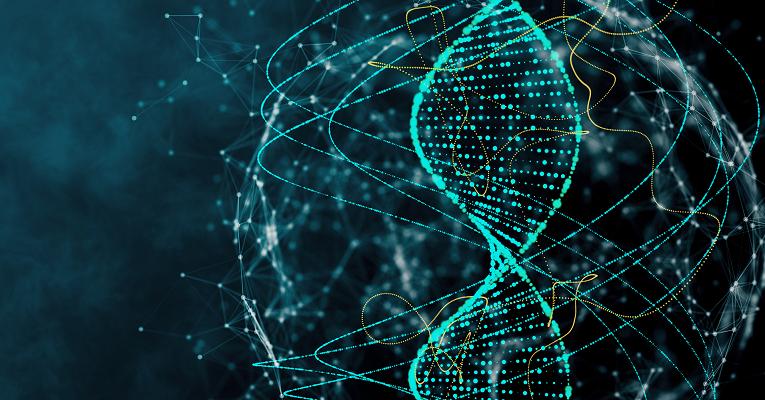 Ученые открыли новый механизм регуляции генов