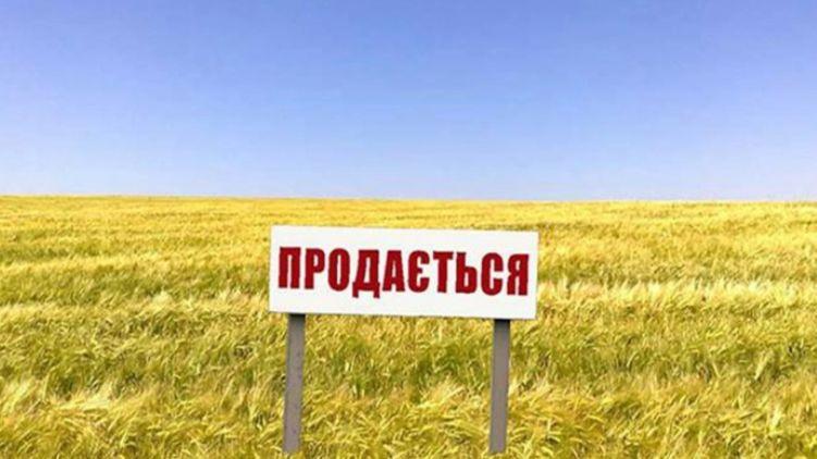 Названо первое последствие открытия рынка земли в Украине