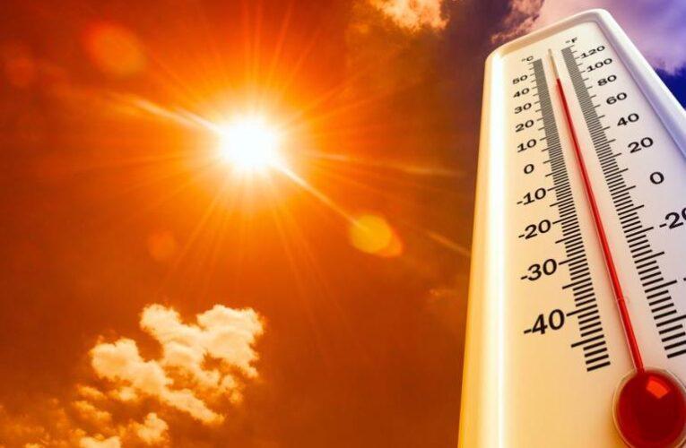 Синоптики обещают аномальную жару уже в первый месяц лета