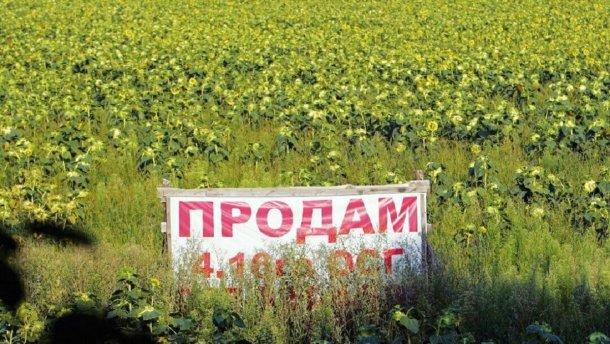 Посол ЕС объяснил, что нужно сделать до 1 июля для успешного запуска рынка земли в Украине
