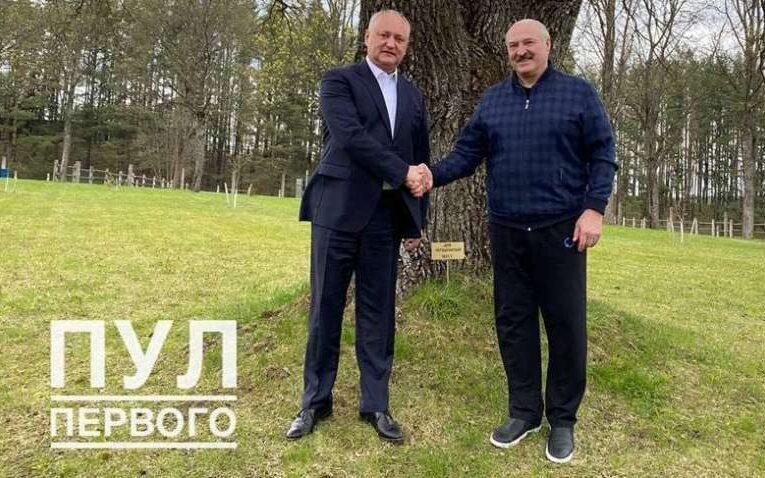 Лукашенко показал свою загородную резиденцию Додону (Фото)