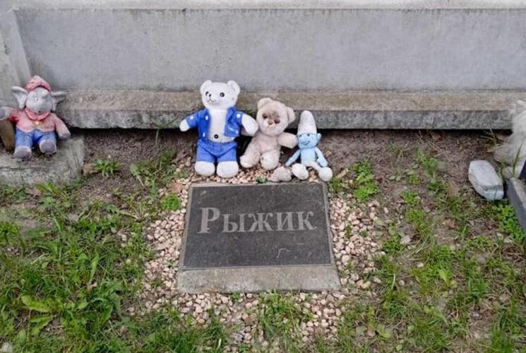 В Киеве исчезнет кладбище домашних животных