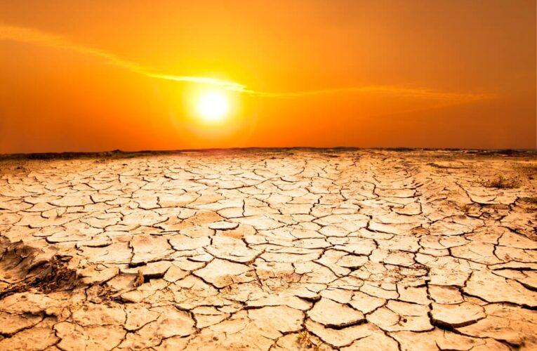 Человечество ожидает самый жаркий год за всю историю
