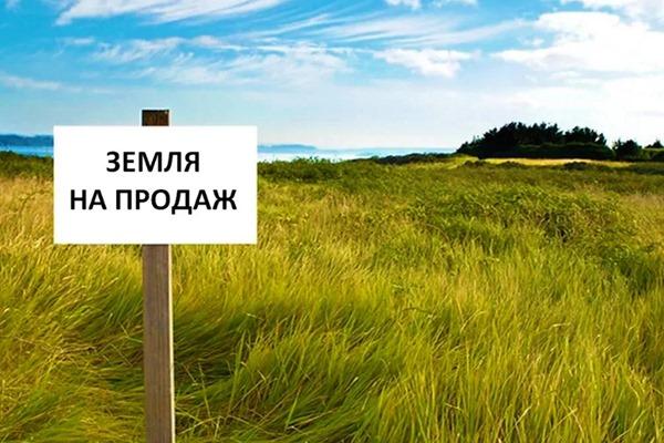 В Минюсте объяснили, сколько составит налог на покупку земли