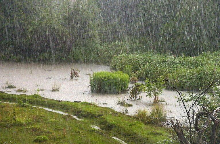 На выходных в Украине будет тепло и дождливо