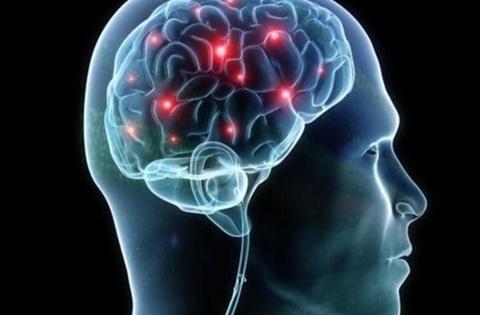 Названы семь способов замедлить старение мозга
