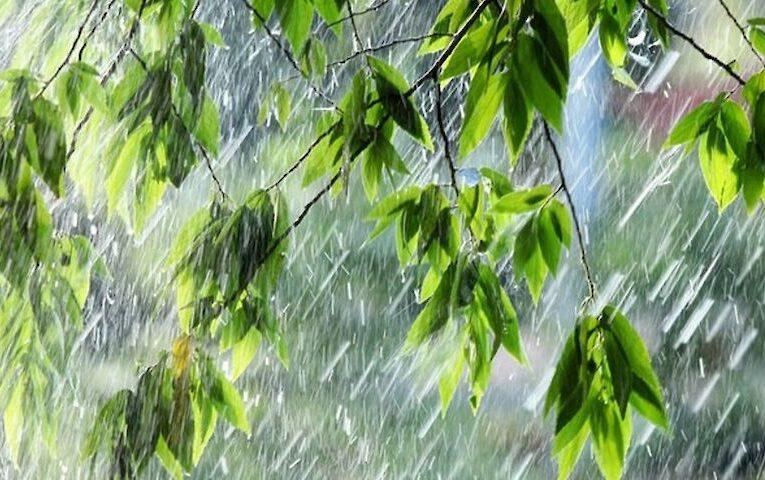 Сегодня в Украине будет прохладно, ветрено и дождливо