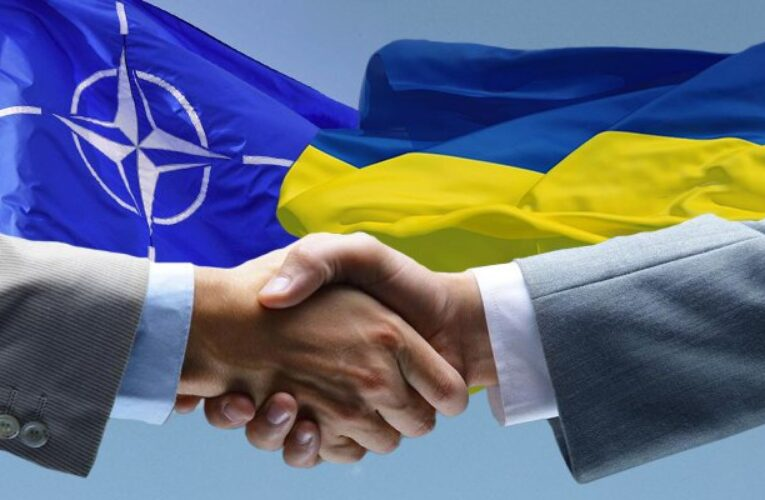 Зеленский запросил перечень реформ для дальнейшей интеграции в НАТО