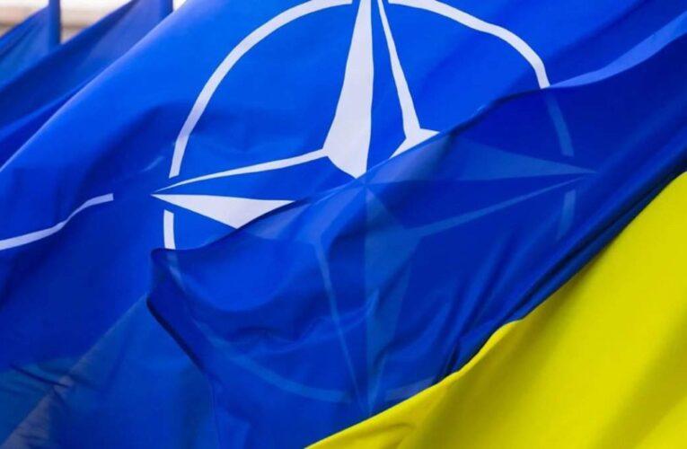 Волкер оценил перспективы вступление Украины в НАТО