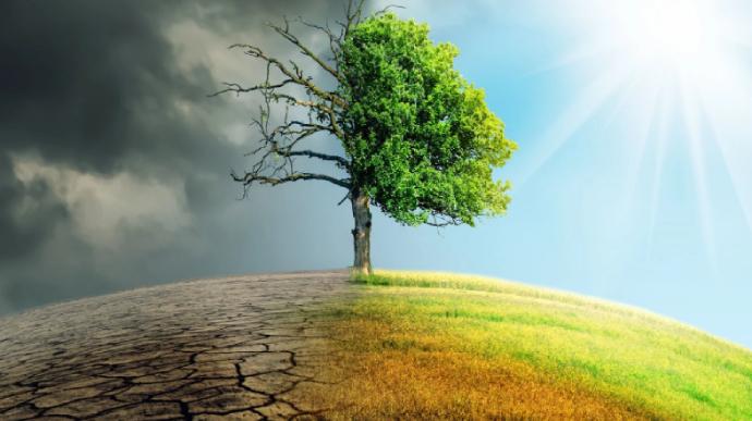 Только одна страна мира реально борется с глобальным потеплением